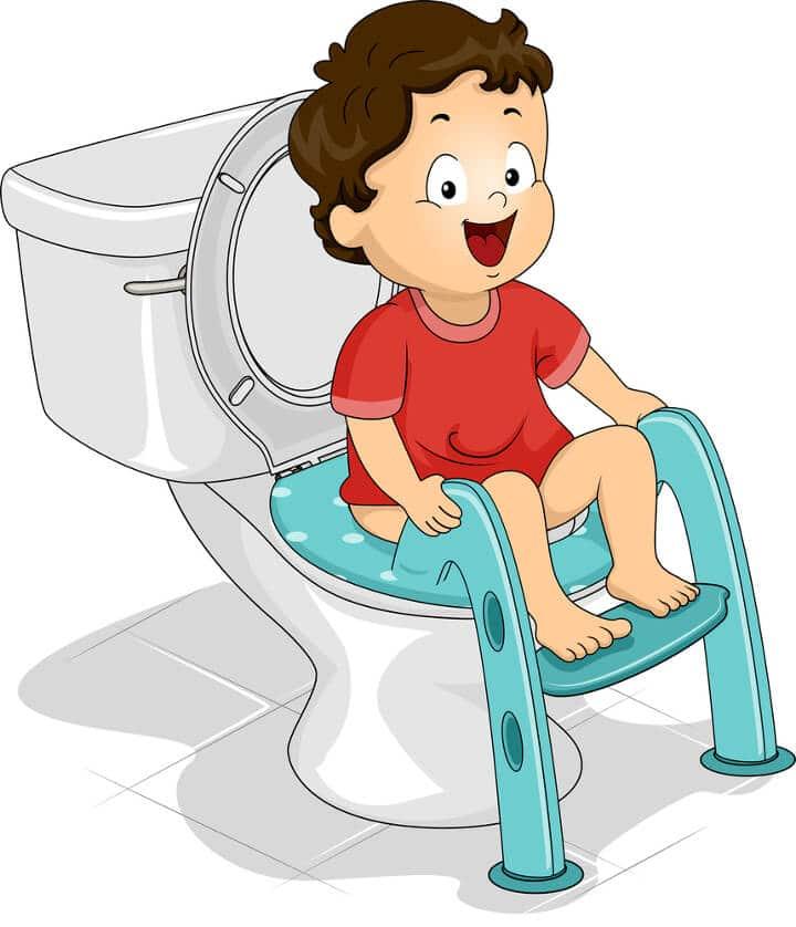 Best potty training seat for boys & girls